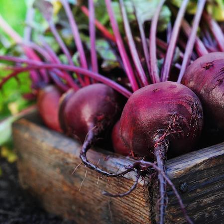 Schmackhaftes Rote Bete Rezept: Die Rote Rübe einmal anders zubereiten